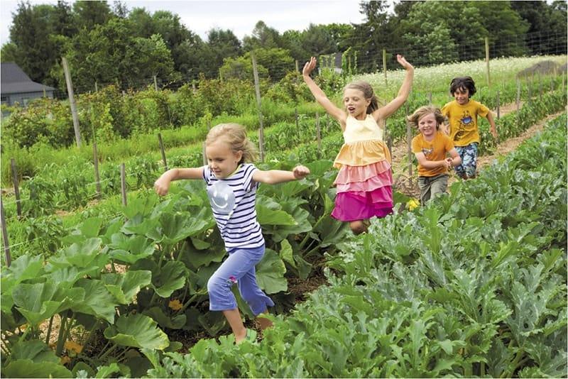 Không gian cho trẻ em thoải mái vui chơi
