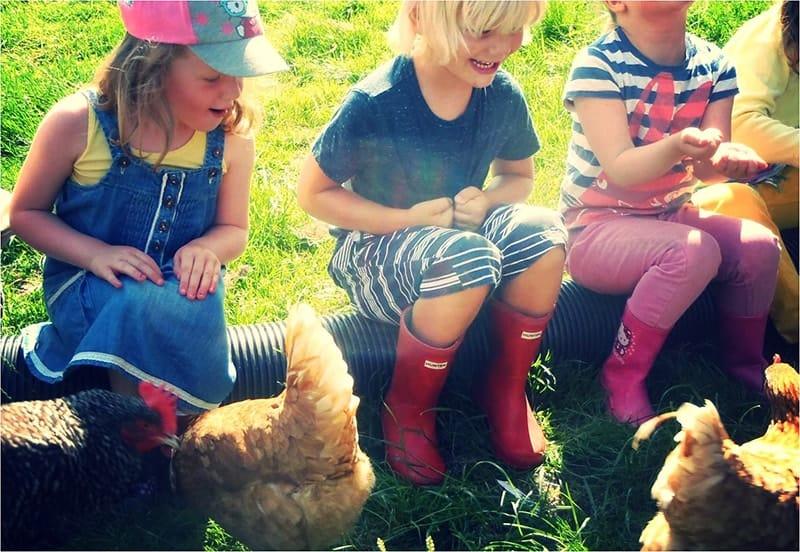 Khu trải nghiệm nông nghiệp trong Farmstay dành cho trẻ em