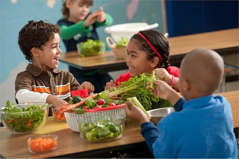Định nghĩa Farmstay dành cho trẻ em