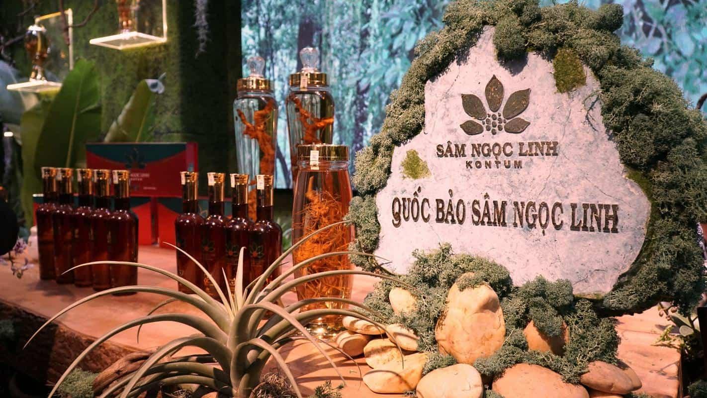 Tiềm năng từ dược liệu quý, hiếm, đặc trưng ở Việt Nam