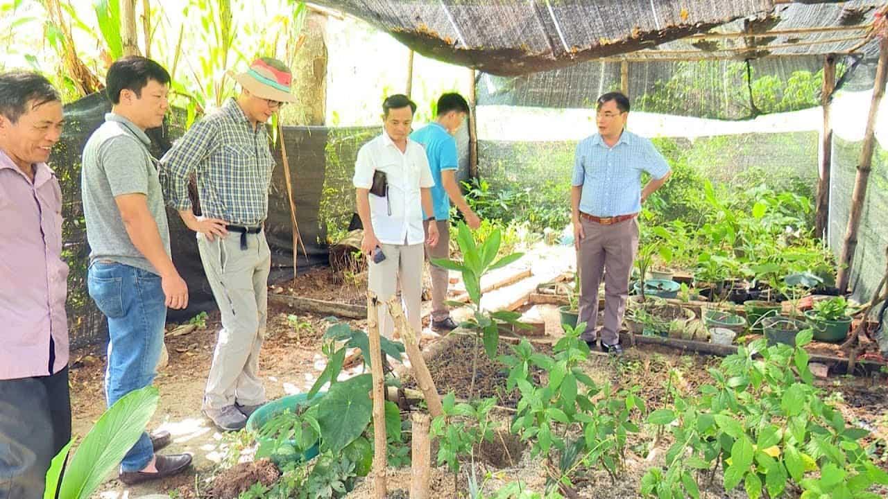 Khu vực trồng dược liệu Farmstay