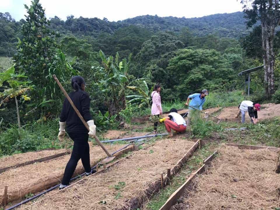 Khung cảnh để đầu tư Farmstay