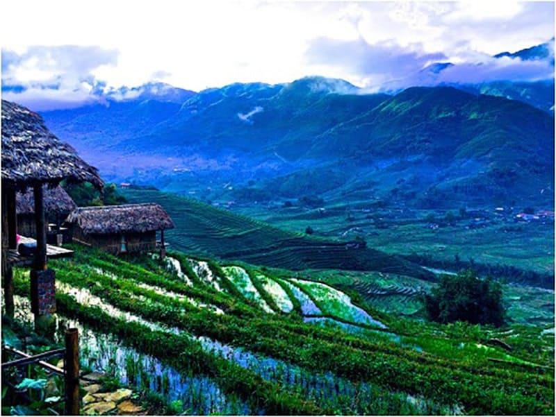 Farmstay Việt Nam