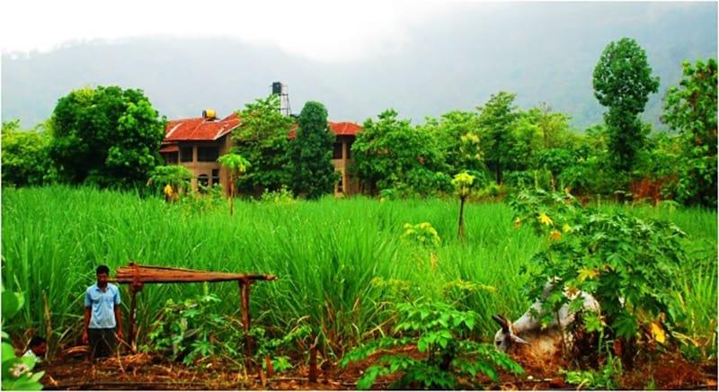 Govardhan Ecovillage được vinh danh với 34 giải thưởng quốc gia và quốc tế