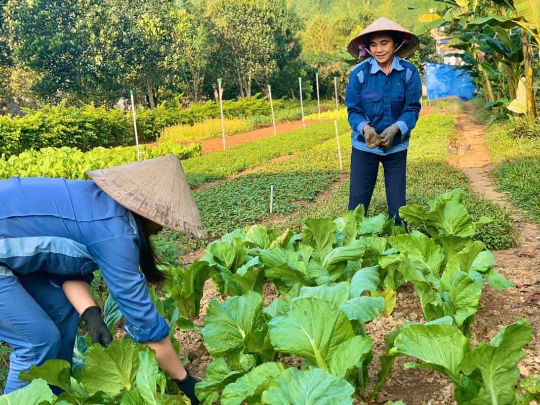 Đảm bảo công năng cho farmstay