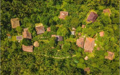 cộng đồng farmstay