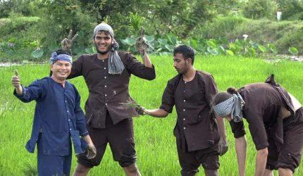Du lịch nông nghiệp là gì