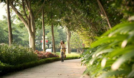 đường sinh thái trong thiết kế farmstay-min